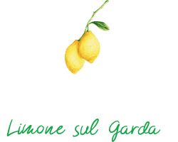 Hotel Susy - Logo Footer 250x200